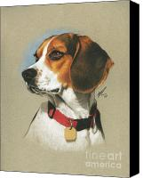 Featured Drawings Canvas Prints - Beagle Canvas Print by Marshall Robinson