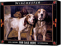 Winchester Canvas Prints - Bear Dogs Canvas Print by H R Poore