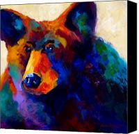 Alaska Canvas Prints - Beary Nice - Black Bear Canvas Print by Marion Rose