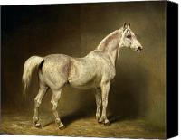White Horse Painting Canvas Prints - Beatrice Canvas Print by Carl Constantin Steffeck