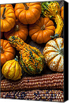 Harvesting Canvas Prints - Beautiful autumn Canvas Print by Garry Gay