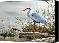 Driftwood Canvas Prints - Beautiful Heron Shore Canvas Print by James Williamson