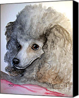 Cannine Canvas Prints - Beautiful Poodle Canvas Print by Carol Grimes