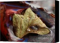 Autumn Canvas Prints - Beautiful World Canvas Print by Juergen Roth