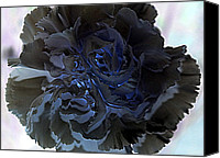 Photo Canvas Prints - Beautifully Negative Carnation Canvas Print by Deniece Platt
