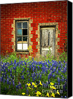Springtime Photo Canvas Prints - Beauty and the Door - Texas Bluebonnets wildflowers landscape door flowers Canvas Print by Jon Holiday