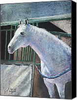 White Horses Canvas Prints - Beauty Canvas Print by Arline Wagner