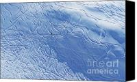Snowboarder Canvas Prints - Beauty In Solitude Canvas Print by Al Bourassa