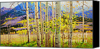 Framed Fine Art  Canvas Prints - Beauty of Aspen Colorado Canvas Print by Gary Kim