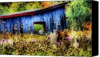 Abandoned Structures Canvas Prints - Beauty of the Blue  Canvas Print by Emily Stauring