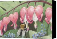 Colored Pencil Canvas Prints - Bee And Bleeding Heart Canvas Print by Amy S Turner