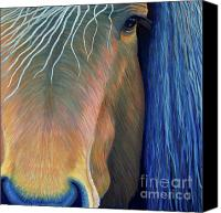 Wild Horse Canvas Prints - Before Sundown Canvas Print by Brian  Commerford