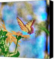 Insects Mixed Media Canvas Prints - Before the heat of the day Canvas Print by Robert Pearson