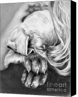 Pencil Drawings Drawings Canvas Prints - Behind Closed Paws Canvas Print by Sheona Hamilton-Grant