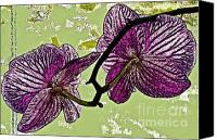 Fushia Canvas Prints - Behind the Orchids Canvas Print by Gwyn Newcombe