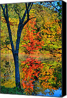 Fall Scenes Canvas Prints - Behind The Y Canvas Print by Emily Stauring