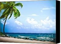 (c) 2010 Canvas Prints - Belize Private Island Beach Canvas Print by Ryan Kelly