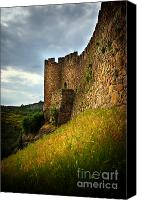 Ruin Canvas Prints - Belver Castle Canvas Print by Carlos Caetano