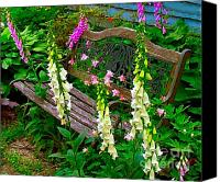 Julie Dant Canvas Prints - Bench Among the Foxgloves Canvas Print by Julie Dant