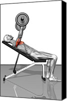Training Canvas Prints - Bench Press Incline (part 1 Of 2) Canvas Print by MedicalRF.com