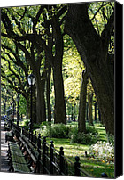 Park Benches Digital Art Canvas Prints - BENCHES TREES and LAMPS Canvas Print by Rob Hans