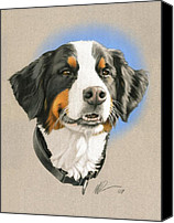 Photo-realism Canvas Prints - Bernese Mountain Dog Canvas Print by Marshall Robinson