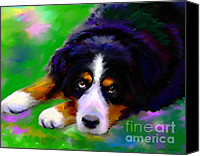 Austin Pet Artist Canvas Prints - Bernese mountain dog portrait print Canvas Print by Svetlana Novikova