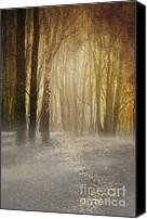 Creepy Canvas Prints - Beware Misty Woodland Path Canvas Print by Meirion Matthias