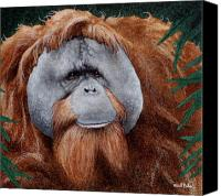 Orangutan Painting Canvas Prints - Beyond Rangoon... Canvas Print by Will Bullas