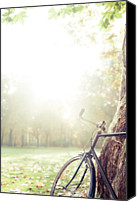 Berlin Canvas Prints - Bicycle Leaned On Big Tree In Sunlight. Canvas Print by Guido Mieth