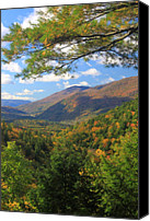 Vermont Autumn Foliage Canvas Prints - Big Branch Wilderness Green Mountains Vermont Canvas Print by John Burk
