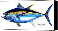 Studies Canvas Prints - Big Eye Tuna Canvas Print by Carey Chen