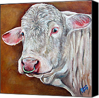 Cow Barn Canvas Prints - Big Larry Canvas Print by Laura Carey