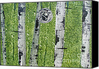 Silver Moonlight Canvas Prints - Birch - Green 3 Canvas Print by Jacqueline Athmann