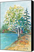 Beaver Painting Canvas Prints - Birch On The Beach Canvas Print by Pat Katz