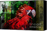 Talking Mixed Media Canvas Prints - Bird of Exotic Color Canvas Print by Christine Mayfield