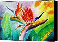 Carlin Blahnik Painting Canvas Prints - Bird of Paradise Canvas Print by Carlin Blahnik