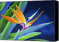 Bold Colors Painting Canvas Prints - Bird of Paradise Canvas Print by Stephen Anderson