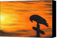 Eagle Drawings Canvas Prints - Bird of Pray Canvas Print by Don McMahon