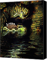 Cavern Canvas Prints - Birdcave Canvas Print by Carl Rolfe