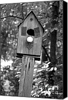 Critters Canvas Prints - Birdhouse Series I in Black and White Canvas Print by Suzanne Gaff