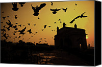 Flock Of Birds Canvas Prints - Birds In Flight At Gateway Of India Canvas Print by Photograph by Jayati Saha