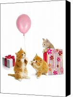 Kitten Greeting Card Digital Art Canvas Prints - Birthday Kitties Canvas Print by Bob Nolin