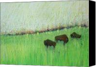 Bison Pastels Canvas Prints - Bison at Fermi Lab Canvas Print by Jane Wilcoxson