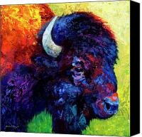 Bison Canvas Prints - Bison Head Color Study III Canvas Print by Marion Rose