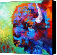 Prairie Canvas Prints - Bison Head II Canvas Print by Marion Rose