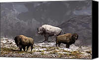 Bison Canvas Prints - Bison King Canvas Print by Daniel Eskridge