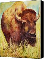 Buffalo Painting Canvas Prints - Bison or Buffalo Canvas Print by Patricia Pushaw