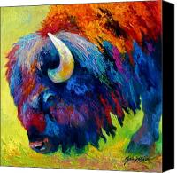 Animal Painting Canvas Prints - Bison Portrait II Canvas Print by Marion Rose