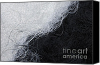Harmonic Canvas Prints - Black and white fibers - yin and yang Canvas Print by Matthias Hauser